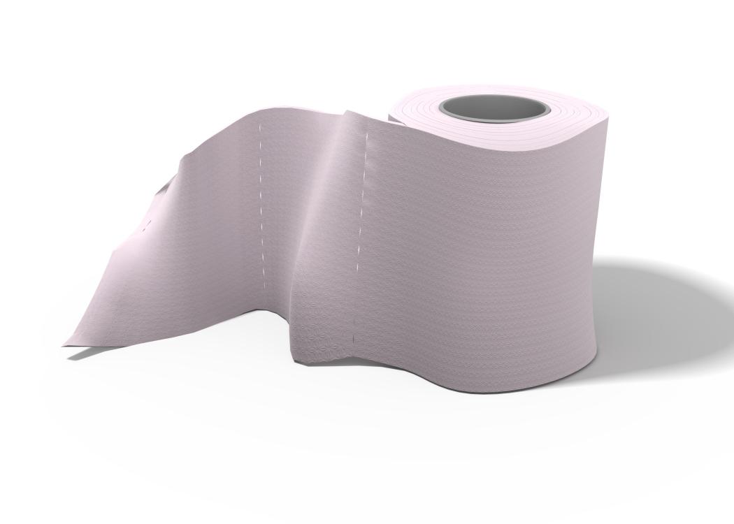 toilet paper - Bathroom Paper